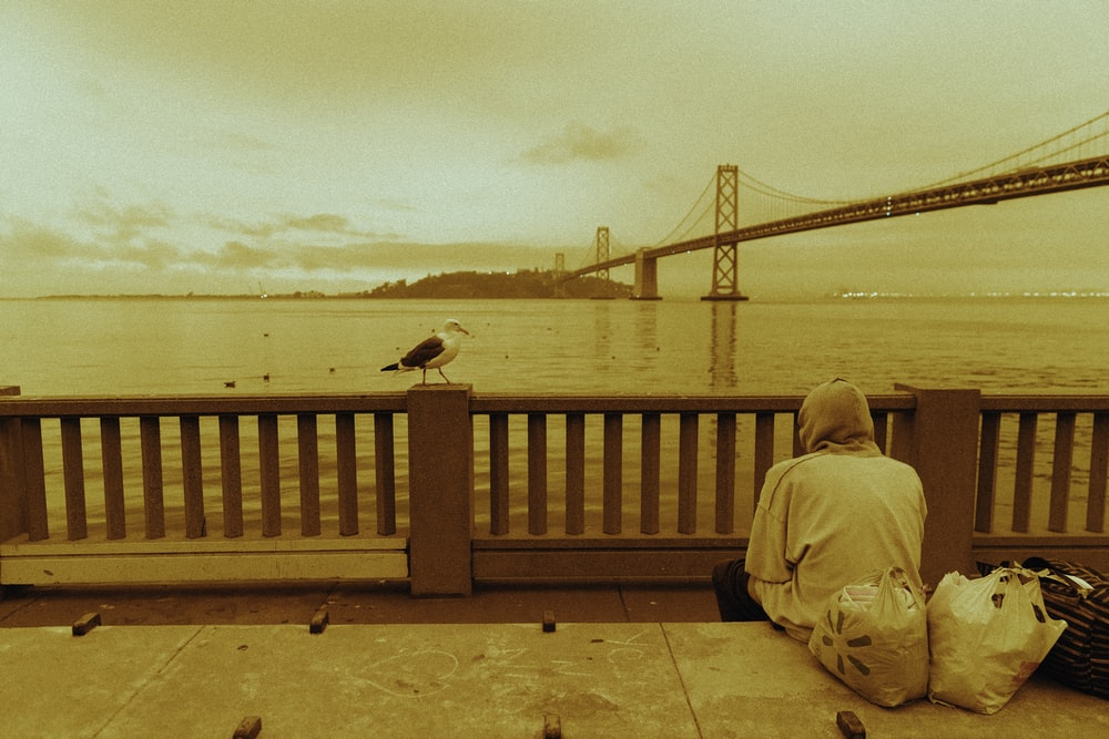 person in brown jacket sitting on brown wooden bench during daytime