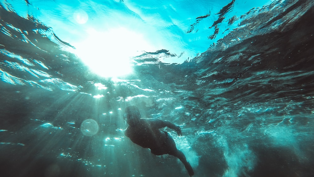 underwater photography of person in black shorts