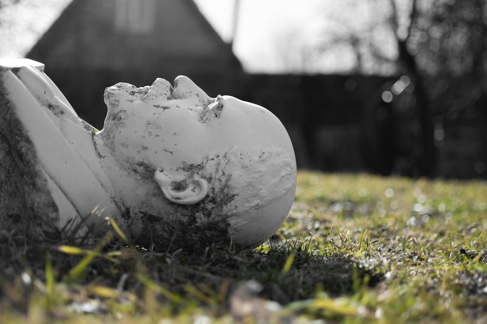 white ceramic bird figurine on green grass during daytime
