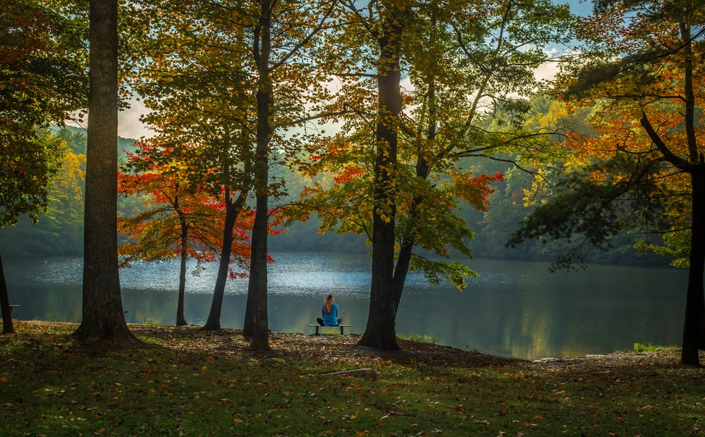 person sitting on bench near body of water during daytime