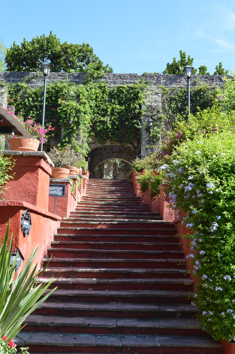 brown wooden stairs with green plants