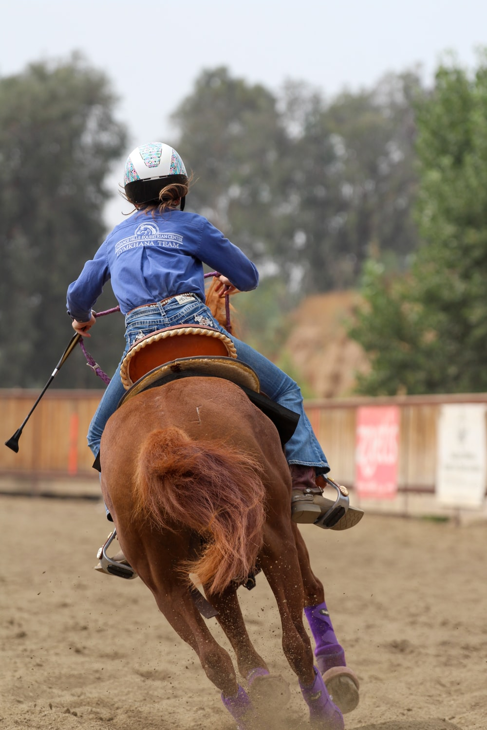 man in blue jacket riding brown horse during daytime