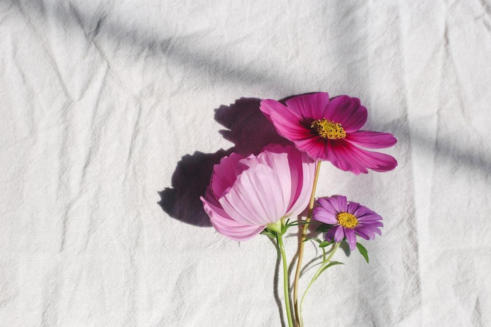 purple flower on white textile