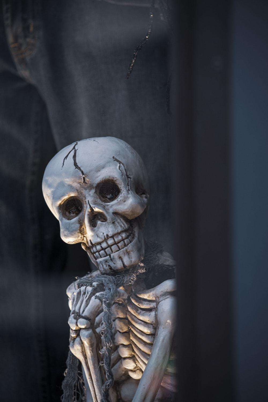 white skull with black background