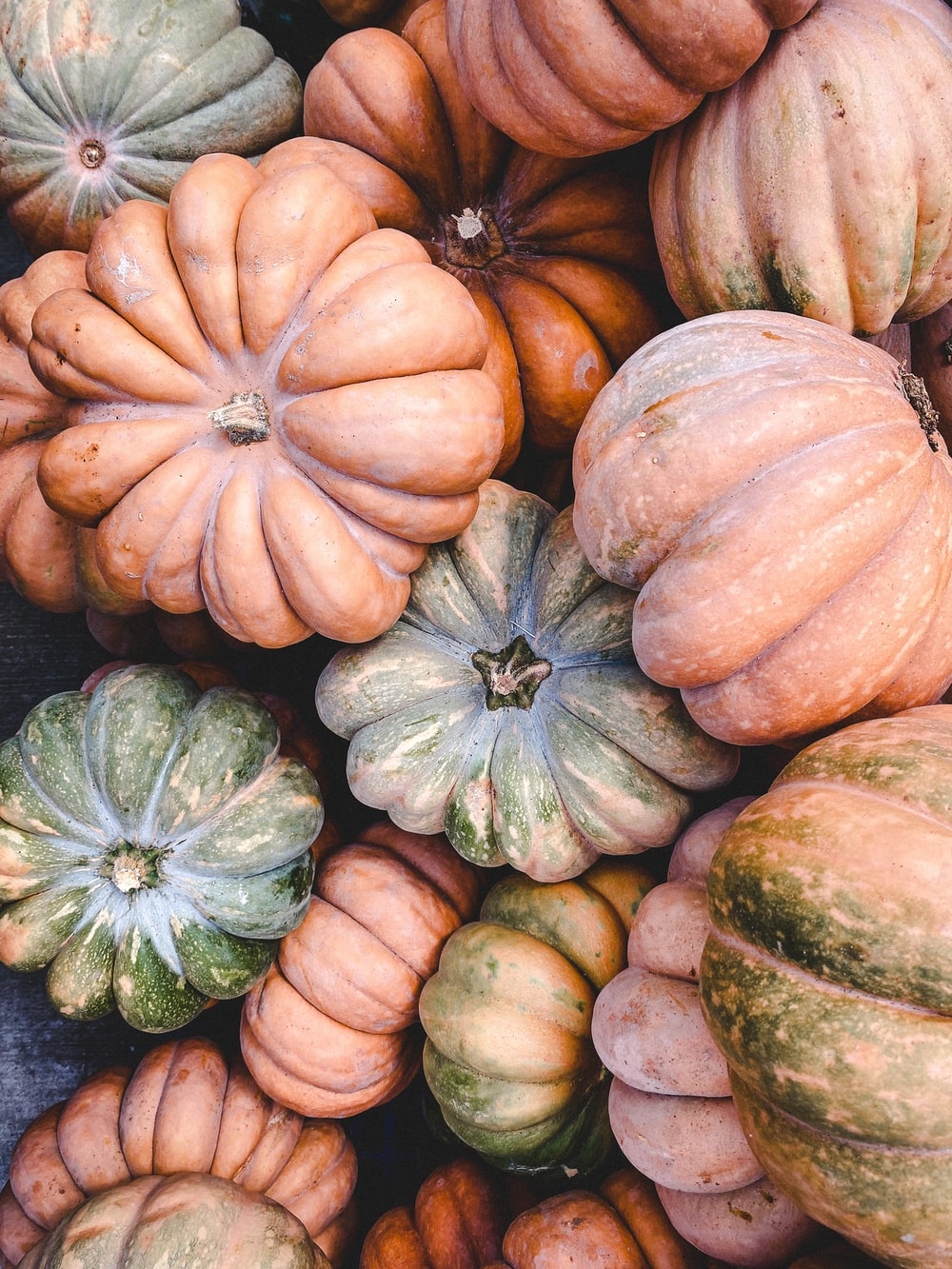 green and orange pumpkin on gray textile