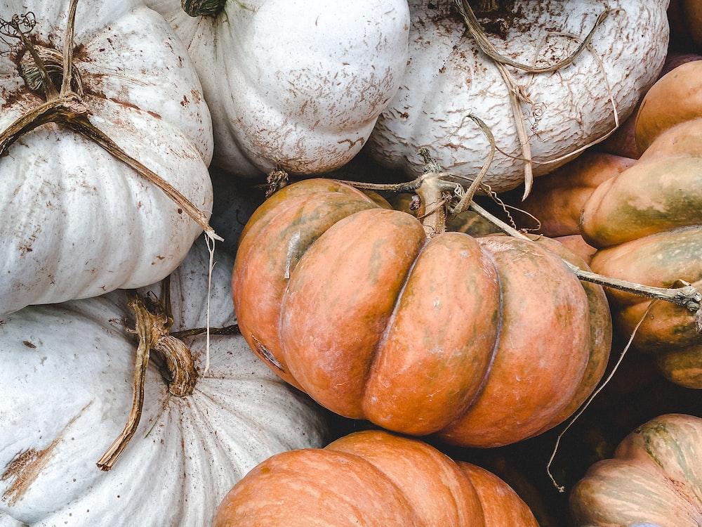 white and orange pumpkin lot