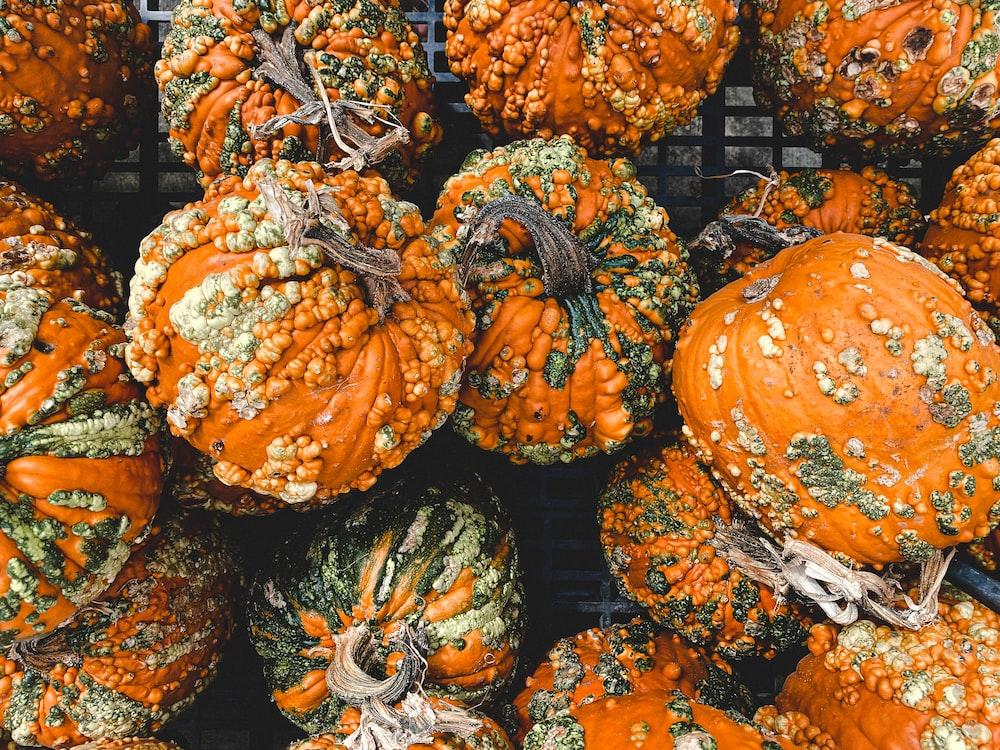 orange and green pumpkin vegetables