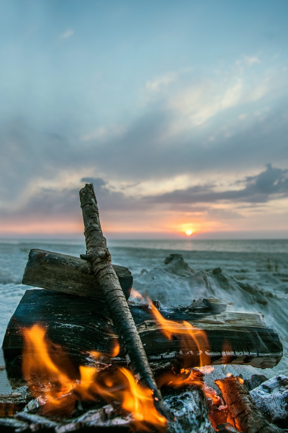 brown wood log on sea shore during sunset