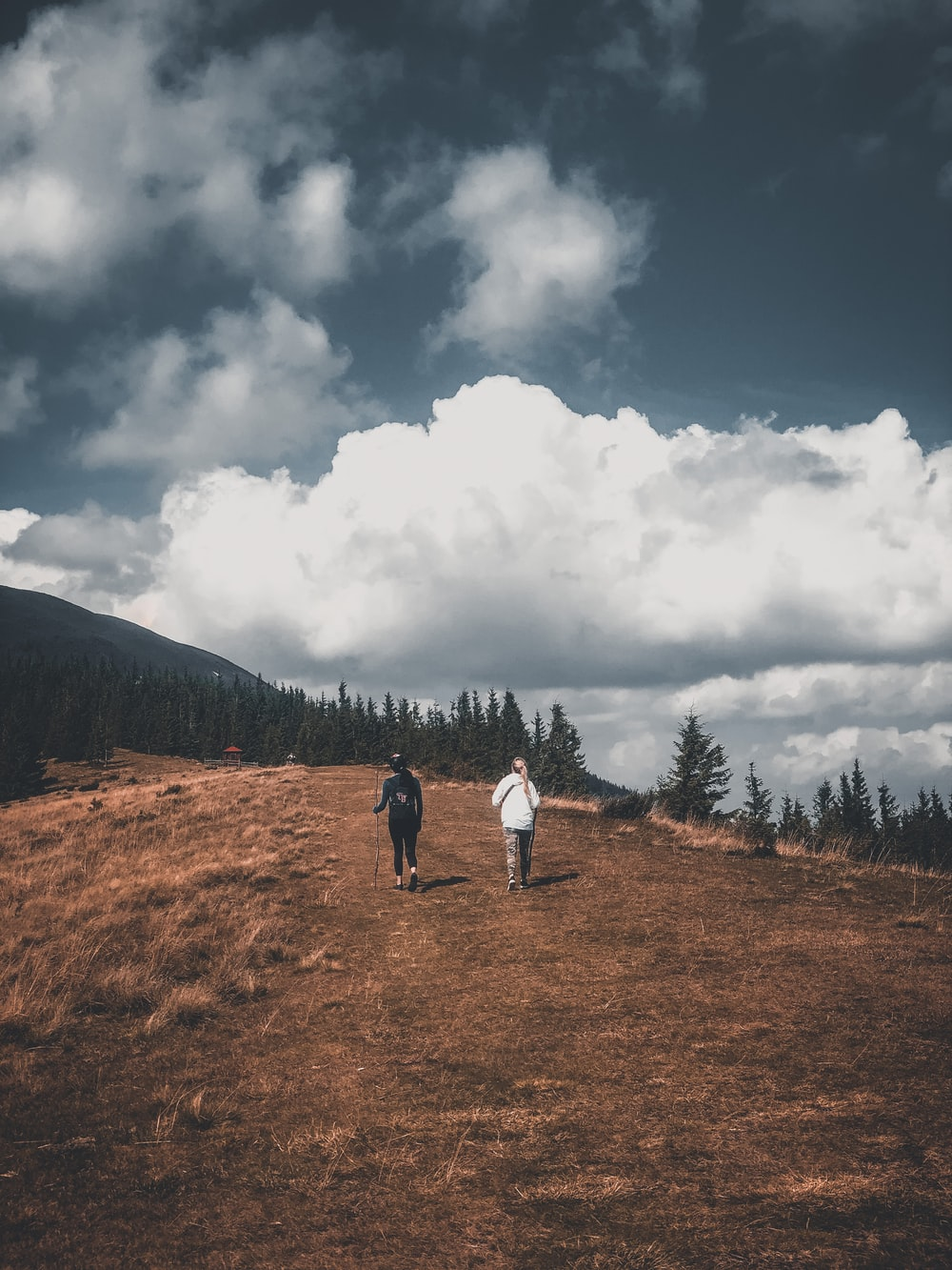 2 person walking on brown field under white clouds during daytime
