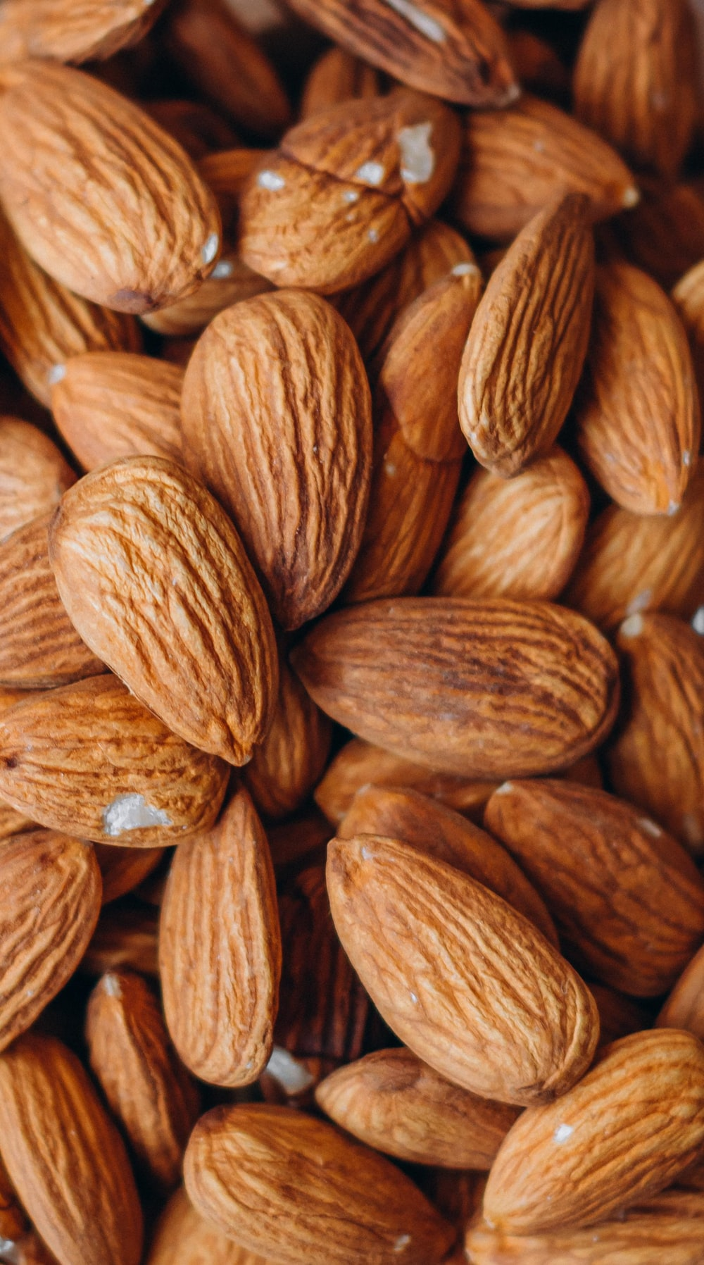 close up photo of brown almond nuts