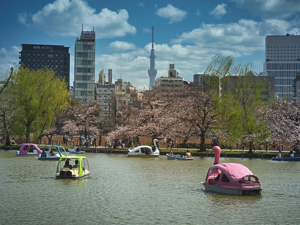 people riding on white and yellow boat on body of water during daytime