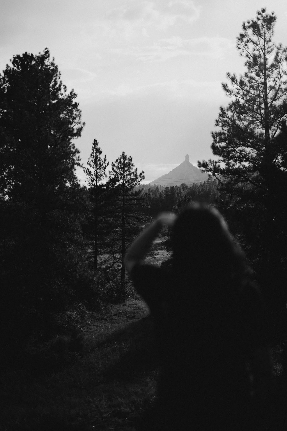 grayscale photo of woman standing near trees