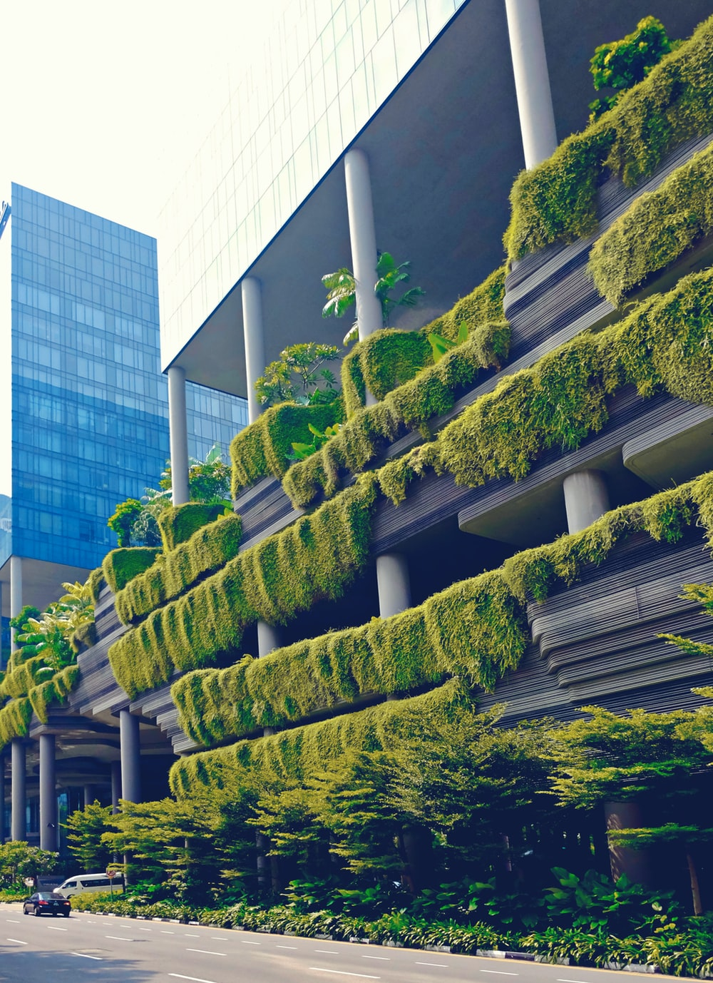 green trees on white concrete building during daytime