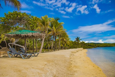 brown wooden beach lounge chair near palm trees under blue sky during daytime honduras teams background