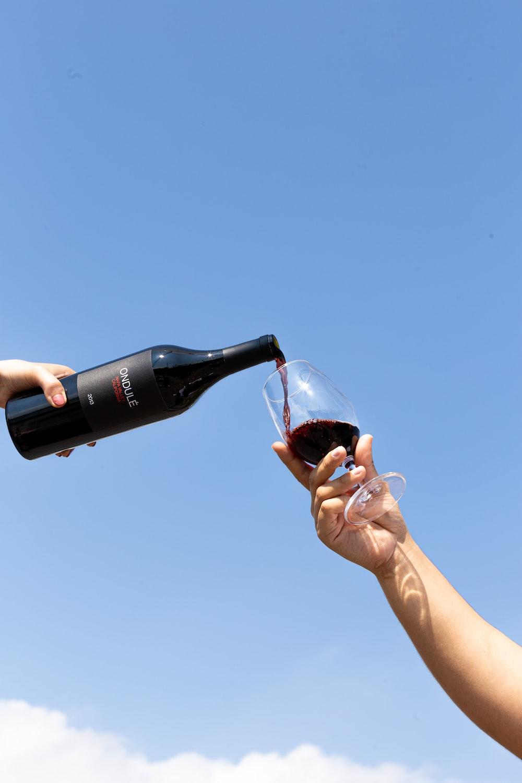 coca cola zero bottle on persons hand