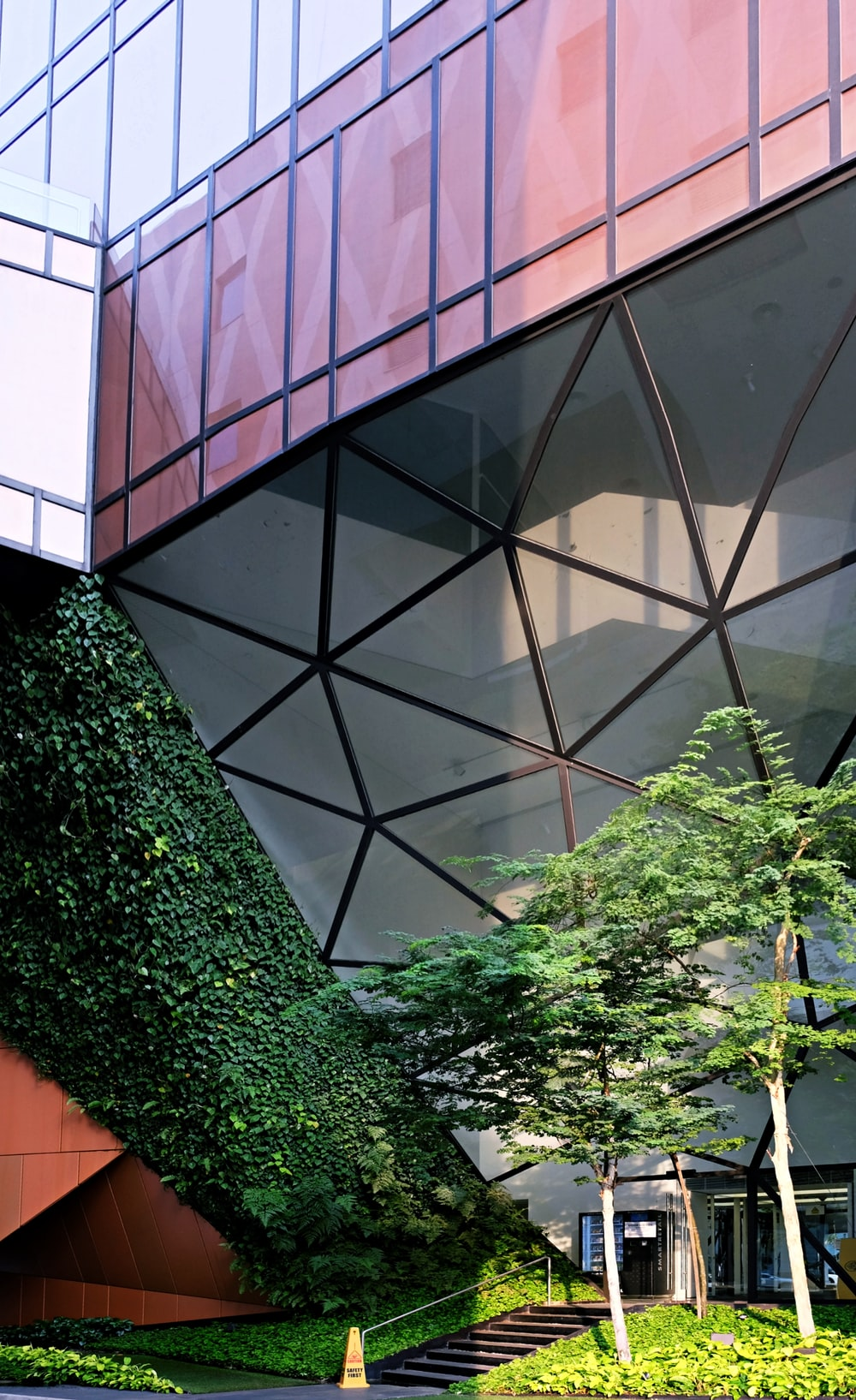 green plant near glass window