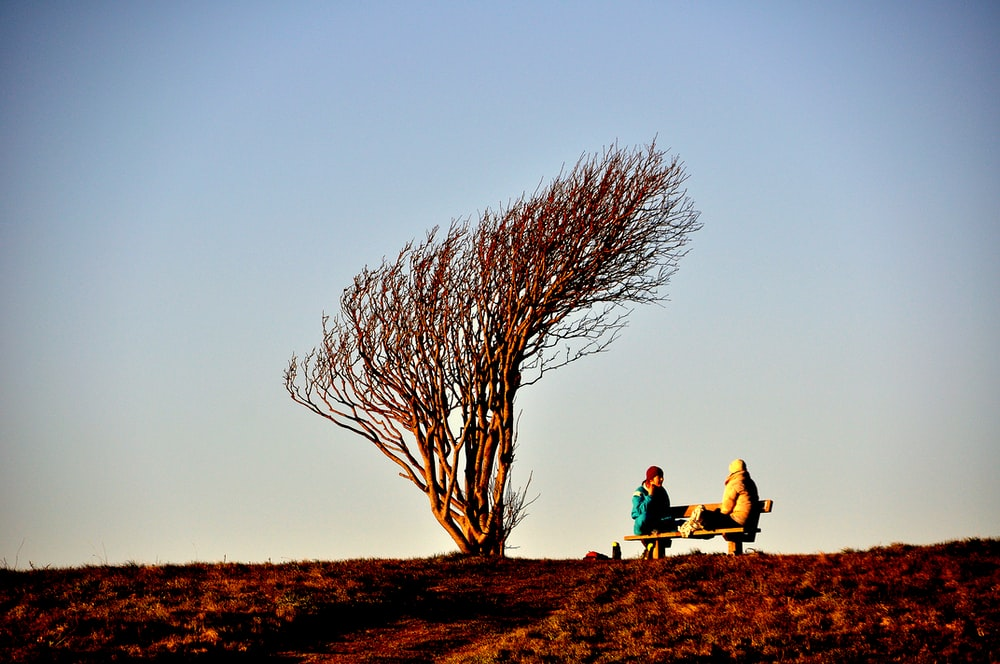 2 person sitting on brown grass field during daytime