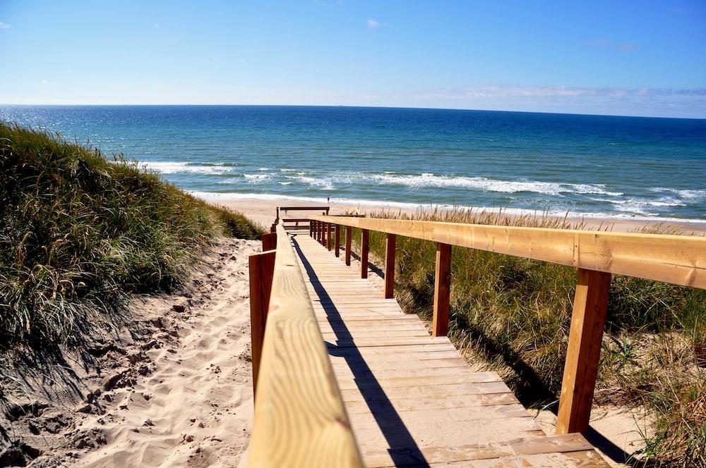 brown wooden bridge on beach during daytime