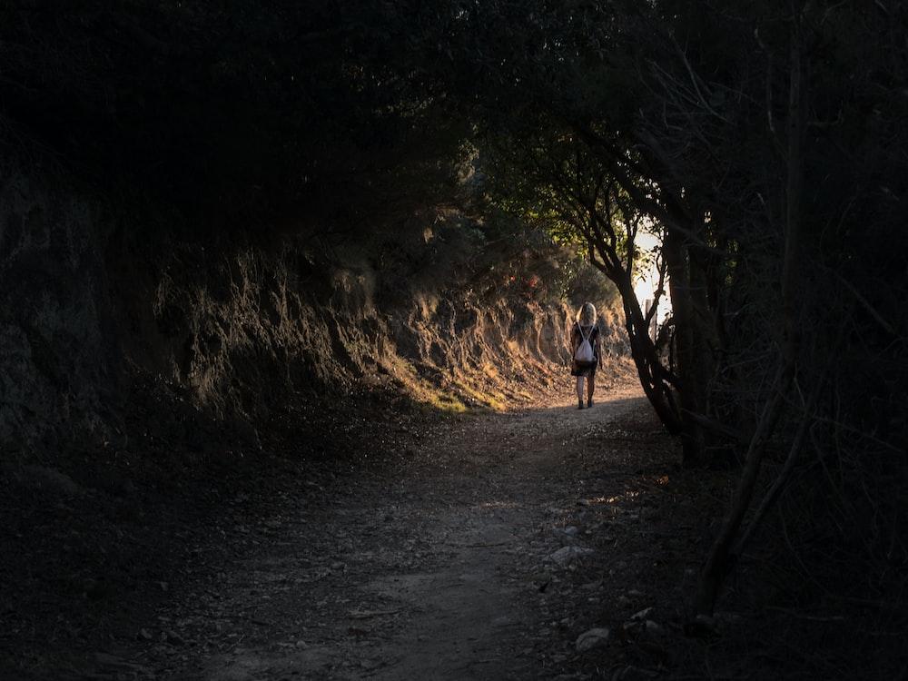 people walking on dirt road between trees during daytime