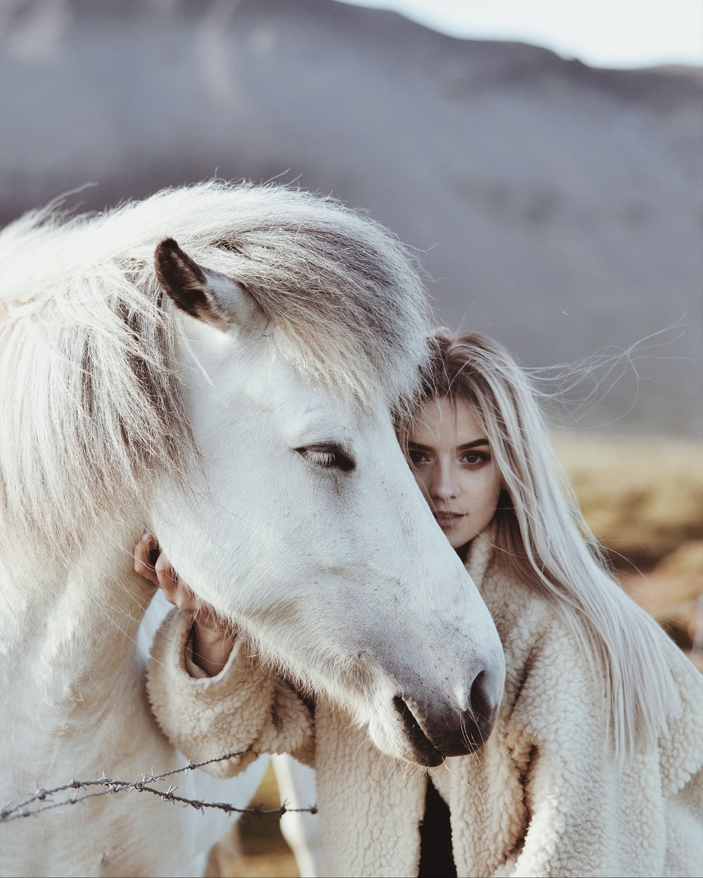white horse with brown eyes