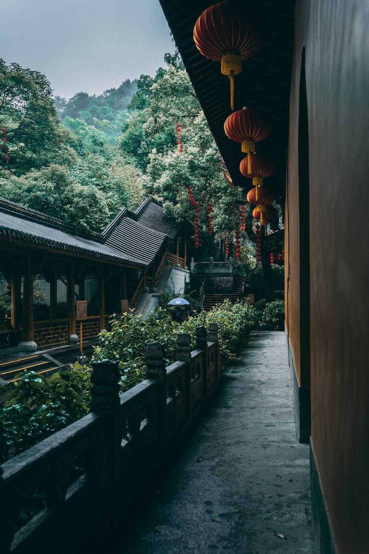 brown and black chinese lanterns