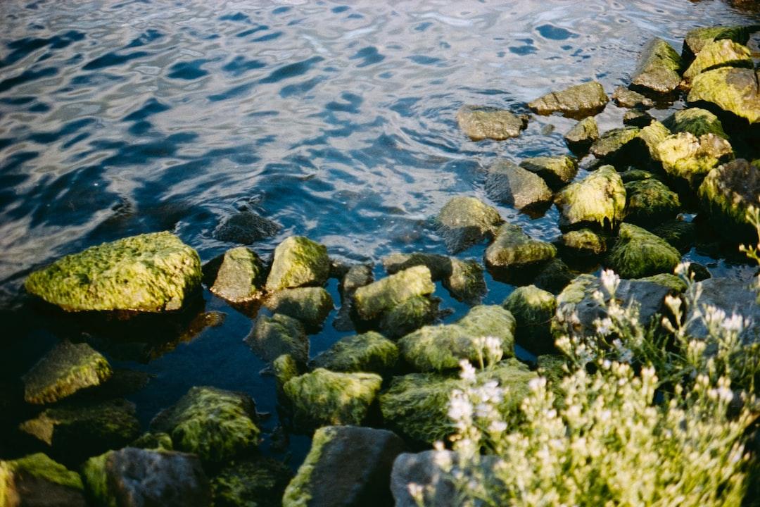 Gray Rocks On Body of Water During Daytime - unsplash