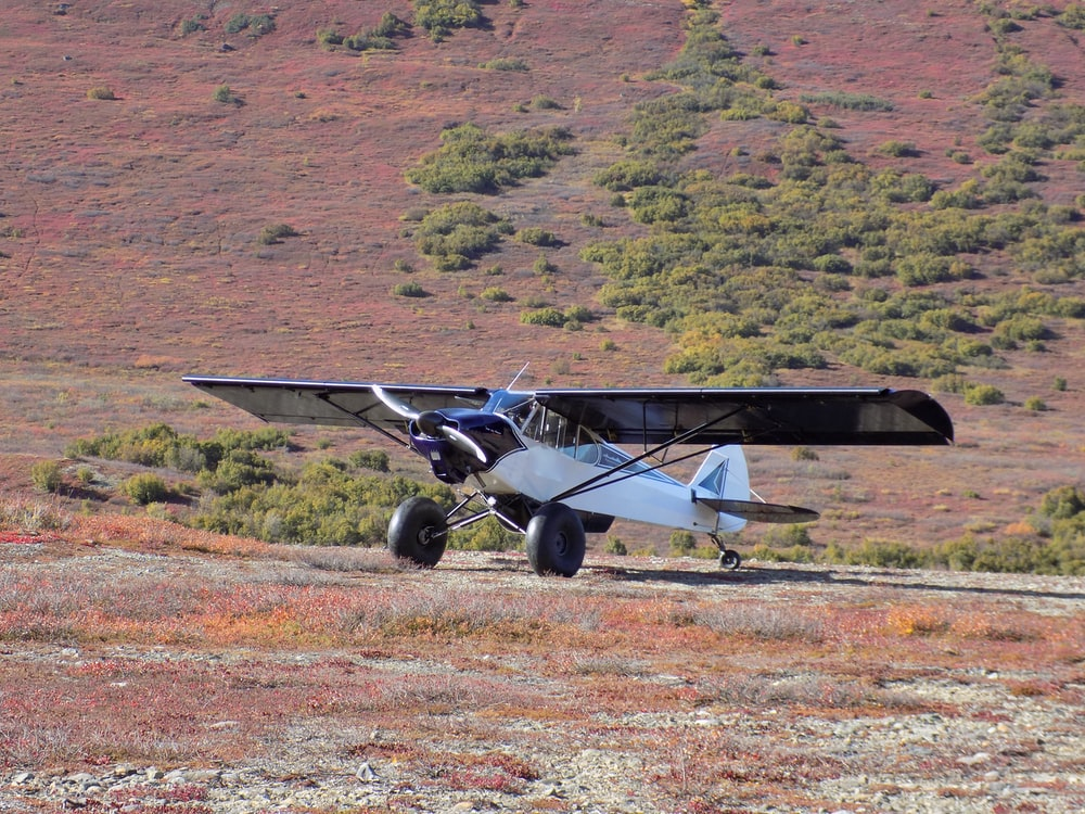 black and gray plane on brown field during daytime