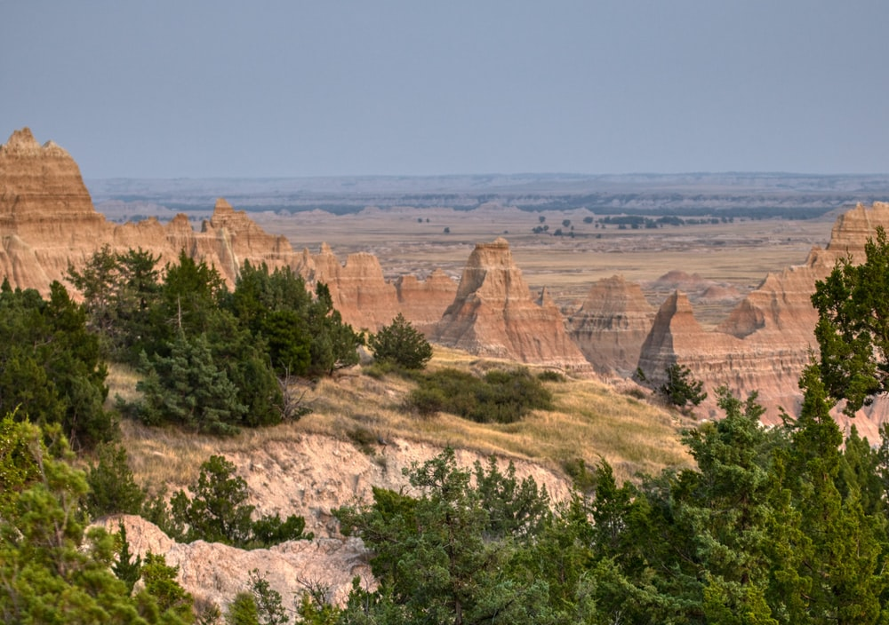 green trees on brown rock formation during daytime