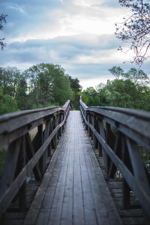 gray wooden bridge between green trees during daytime