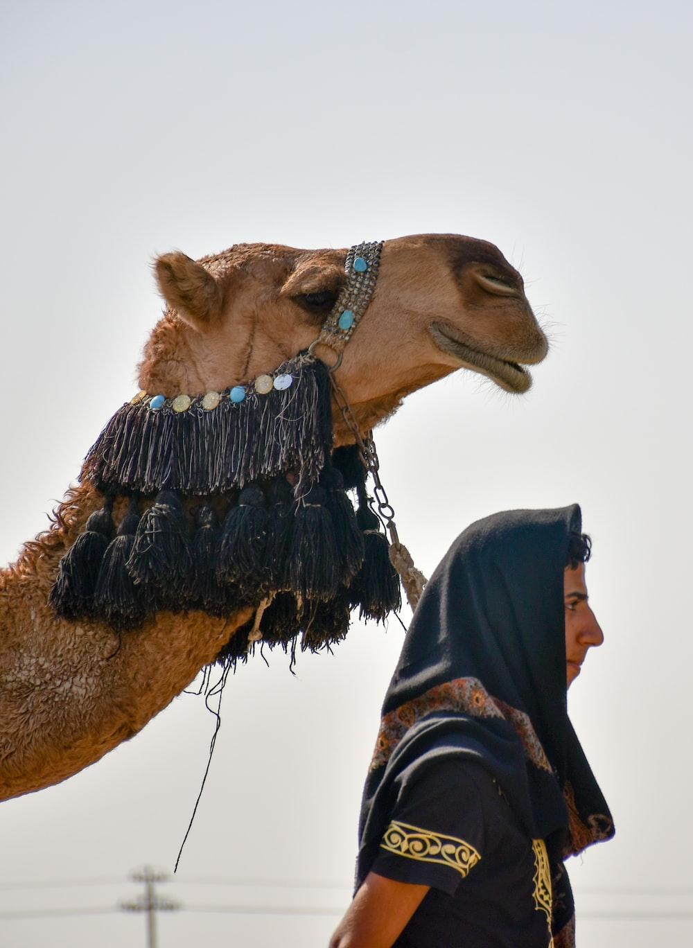 person in black jacket standing beside brown camel