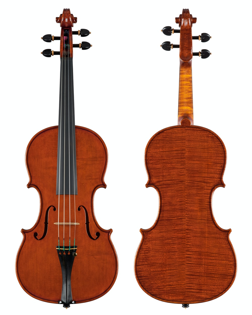brown violin with white background