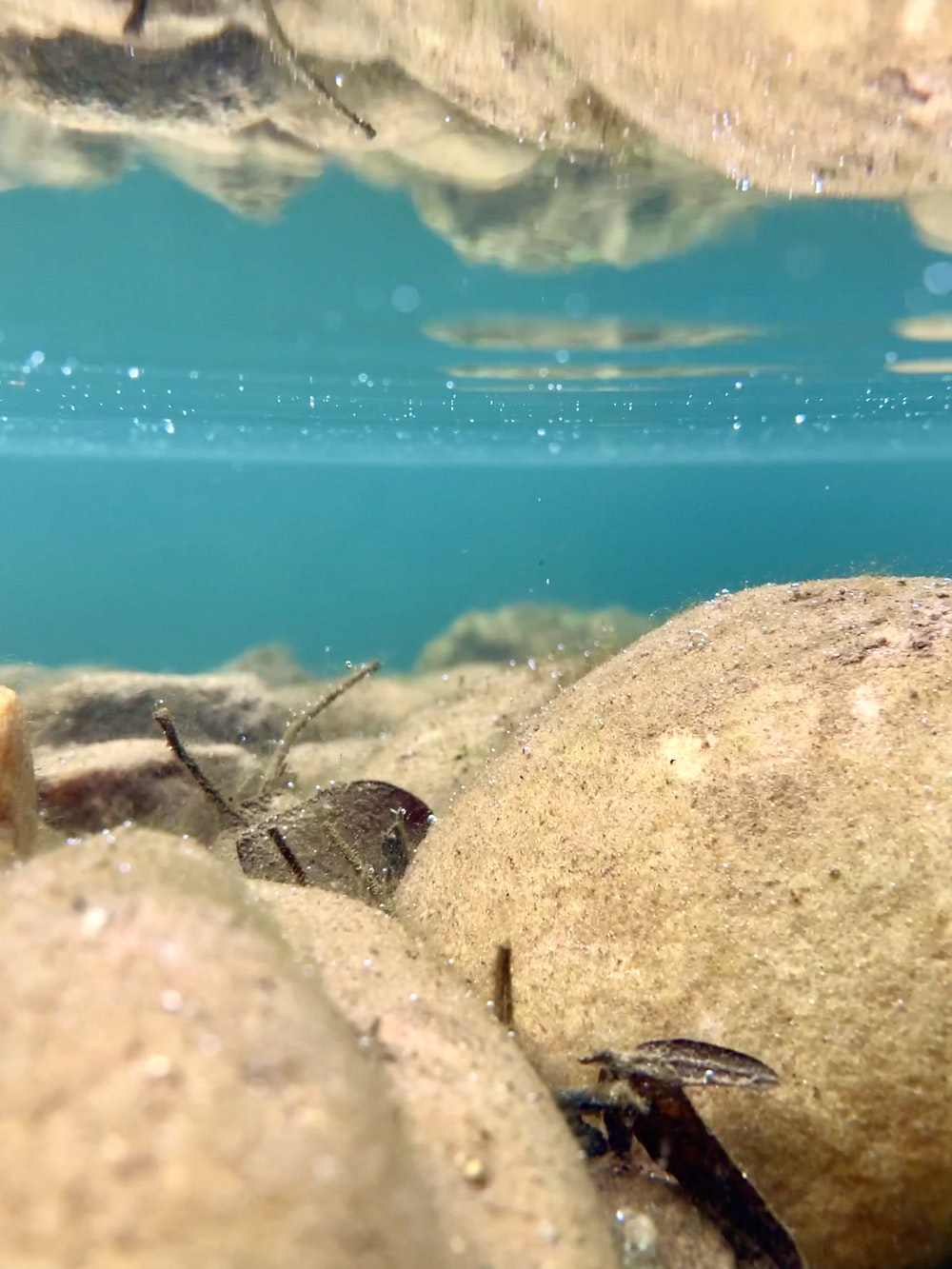 brown and gray rocks on blue water