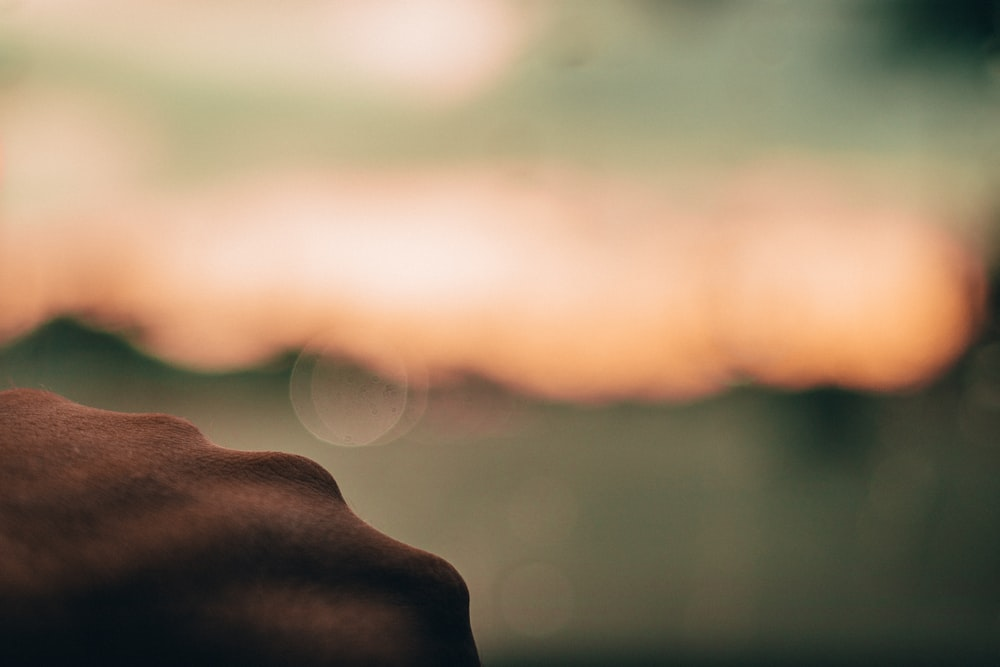 persons hand in front of sun