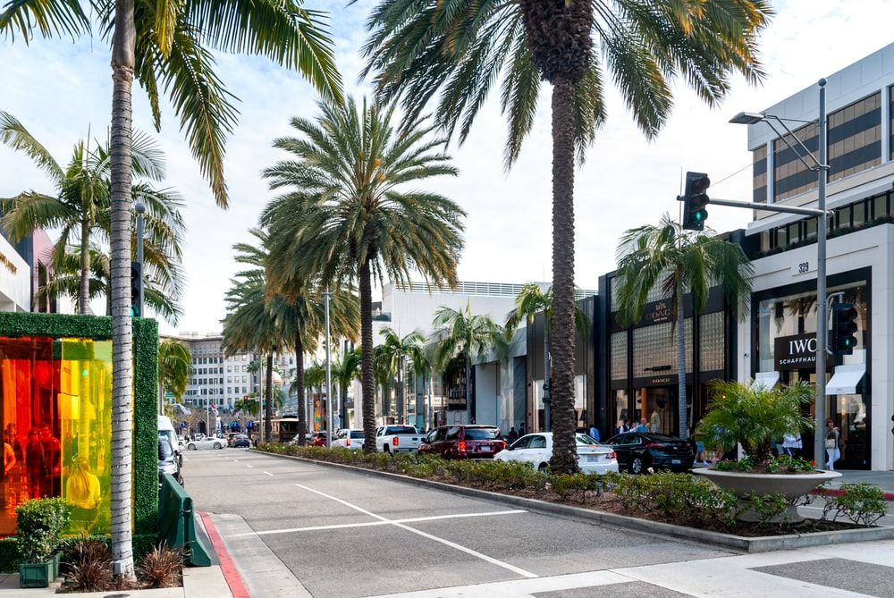 cars parked on sidewalk near palm trees and buildings during daytime