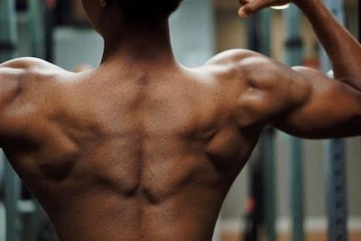 Rygmuskler: Liste og øvelser til muskler i ryggen