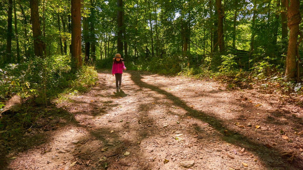 woman in red jacket walking on pathway between trees during daytime
