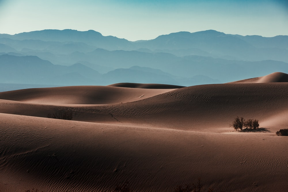 brown sand field during daytime