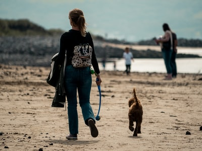 woman in black long sleeve shirt and blue denim jeans holding dog leash walking on beach