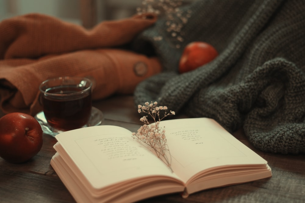 silver and diamond ring on book page