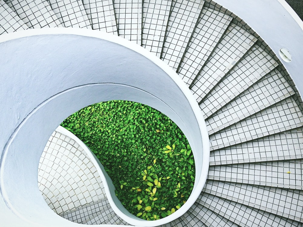 green grass on white spiral staircase