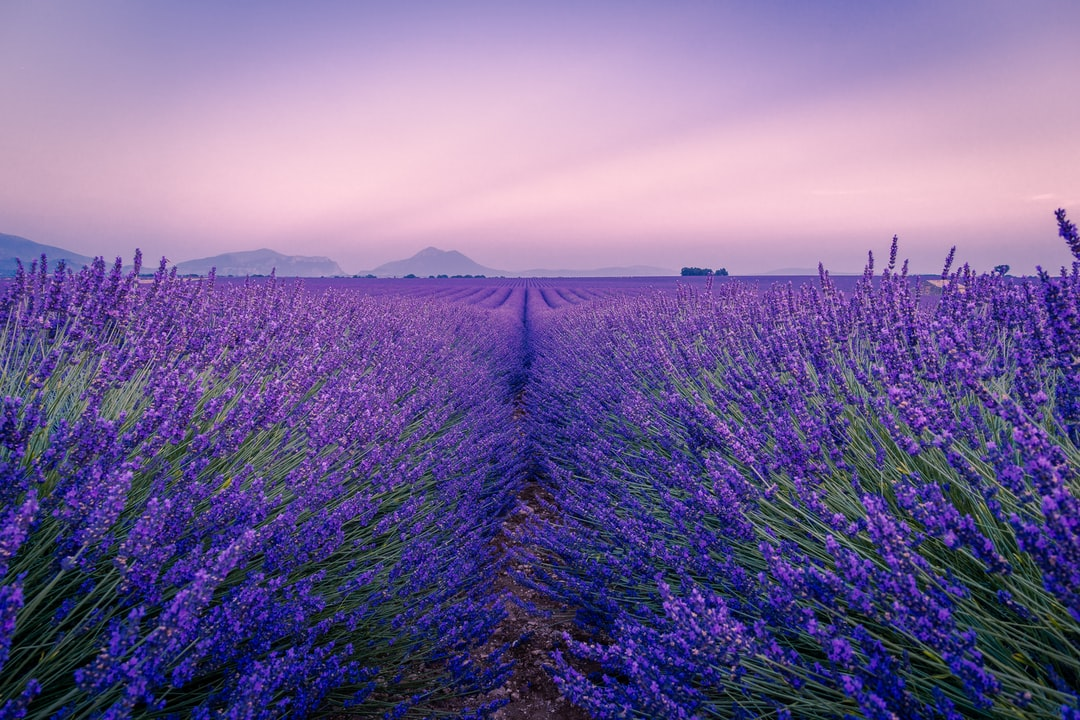 A Wonderful Night In Provence - unsplash