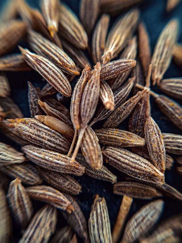 Cumon Seeds