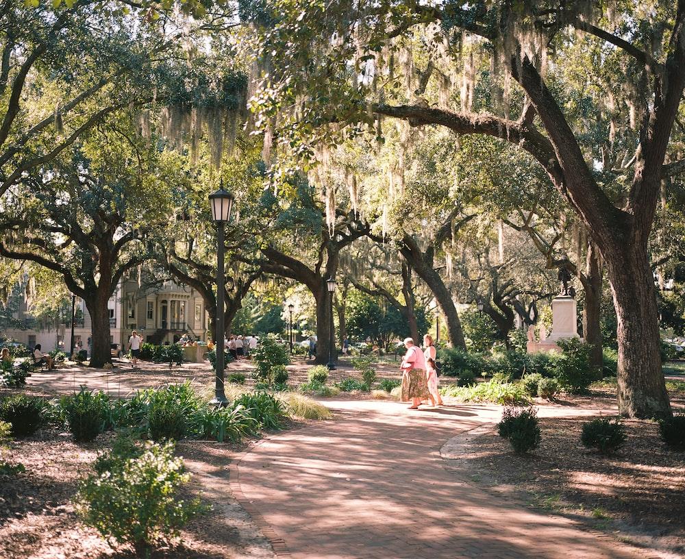 woman in white dress walking on pathway between trees during daytime