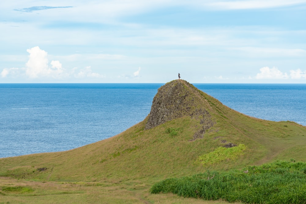 person standing on green grass covered hill by the sea during daytime