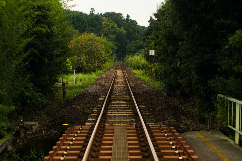 brown train rail between green trees during daytime