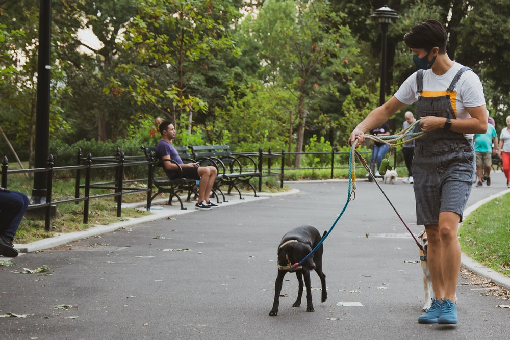 man in white t-shirt and blue shorts holding black short coat dog