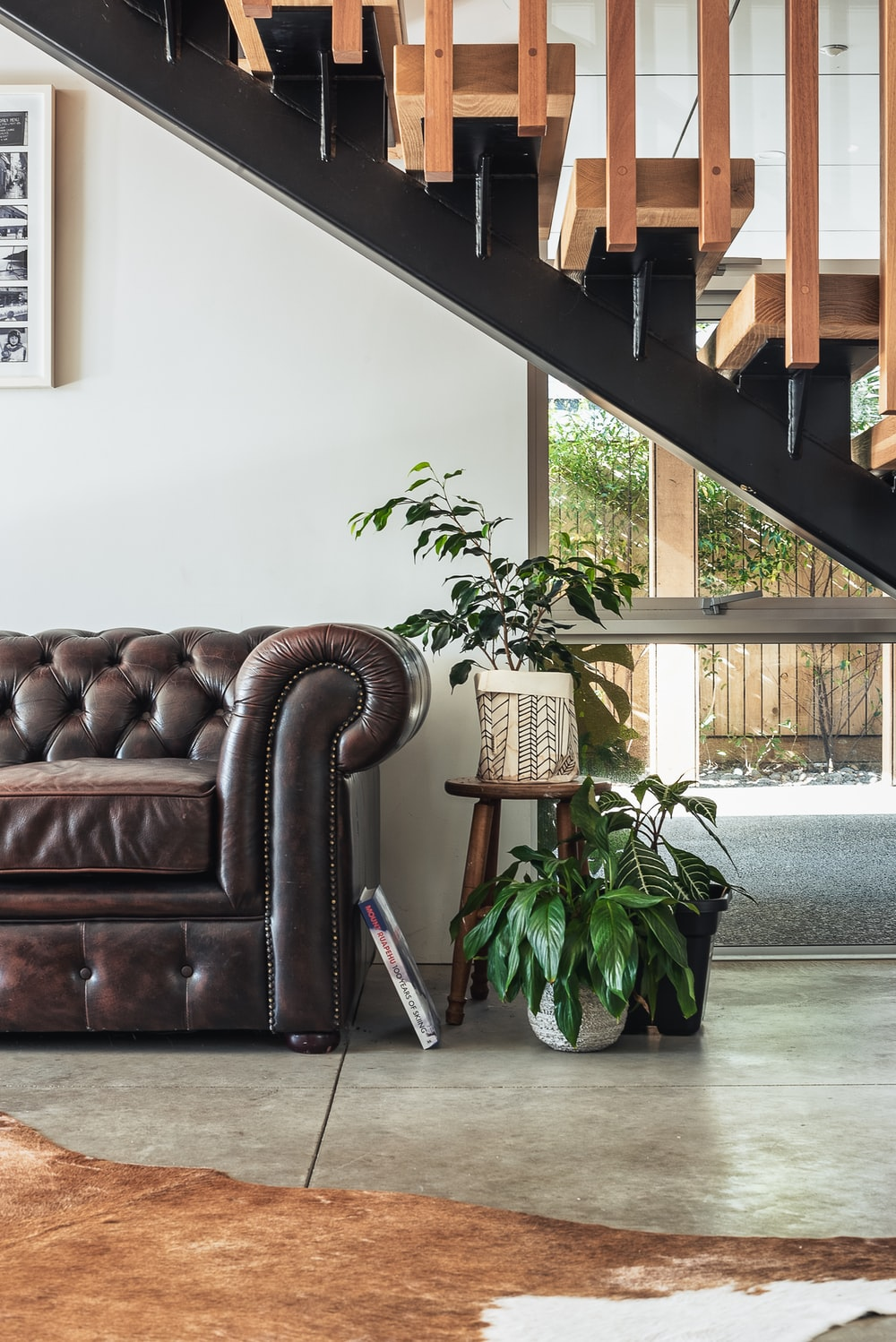 green potted plant beside brown leather couch