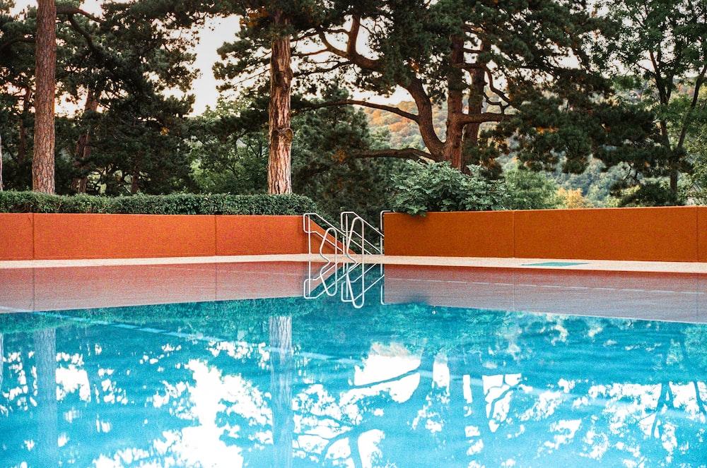 green trees beside swimming pool