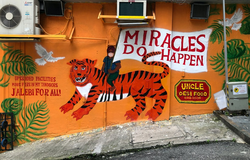 orange and black tiger graffiti