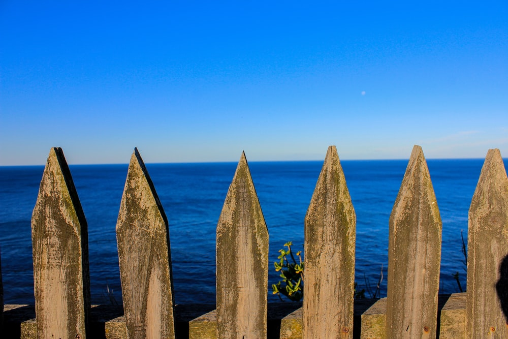 white wooden fence under blue sky during daytime